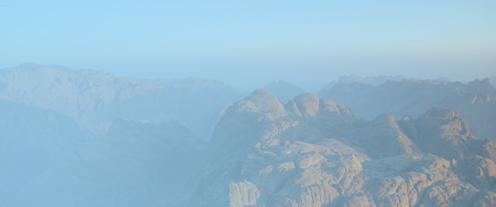 M&D-bg-shop-1024x427-sinai